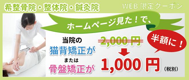 webcoupon_2015